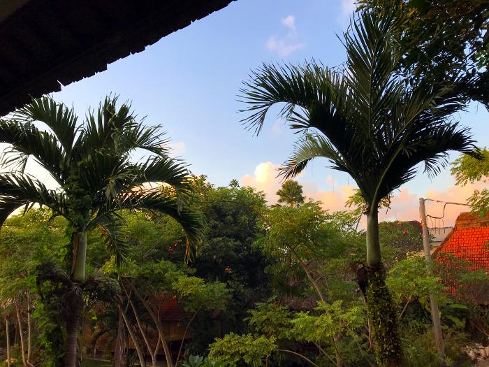 バリ島旅行記ブログ~ウブドのホテルはおすすめしたい安くて便利なココ~
